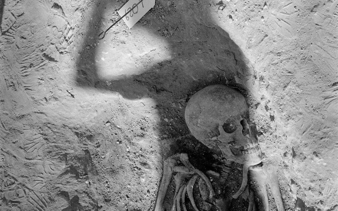 La mémoire des os